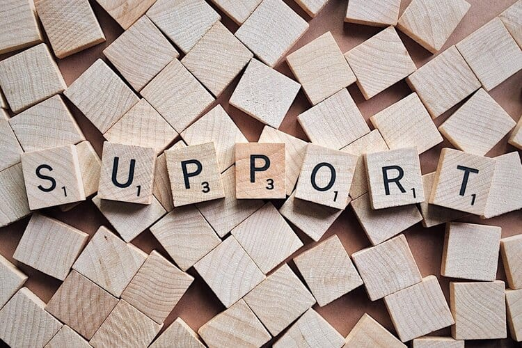Temporary Spousal Support